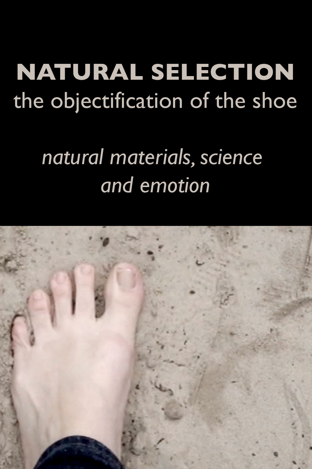 NATURAL SELECTION the objectification of the shoe